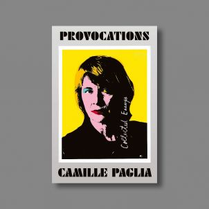 Provocations: Collected Essays on Art, Feminism, Politics, Sex, and Education