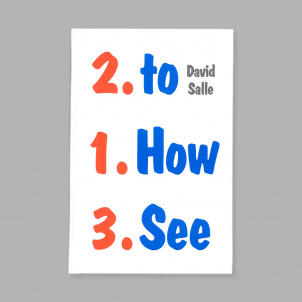 David Salle: How to See