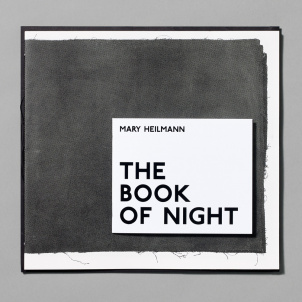 Mary Heilmann: The Book of Night