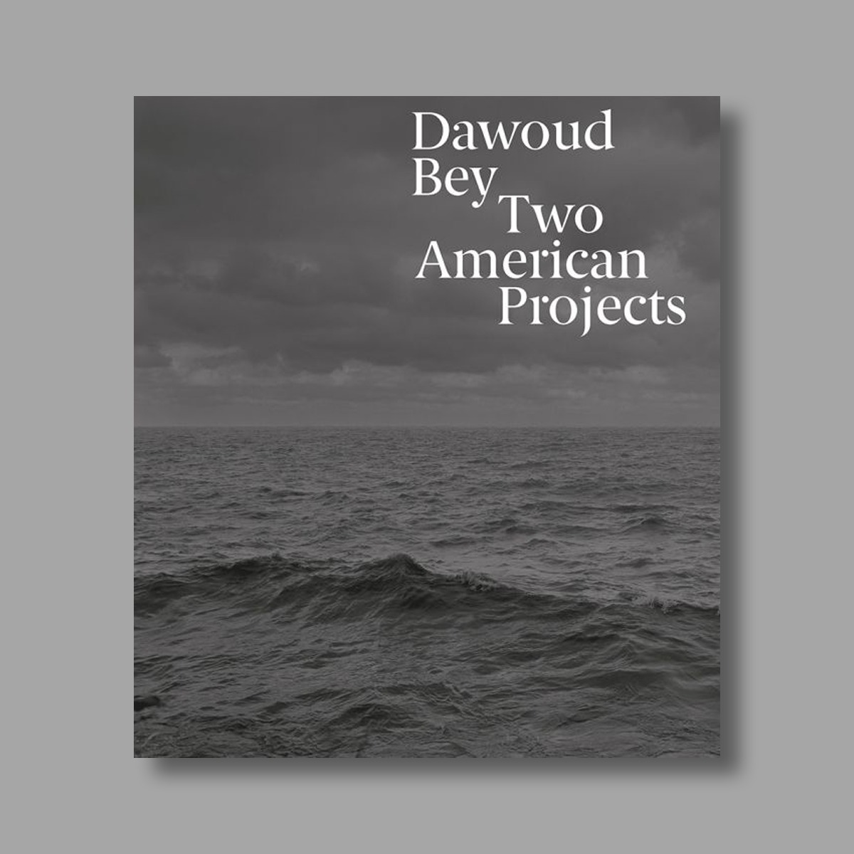Dawoud Bey catalogue cover