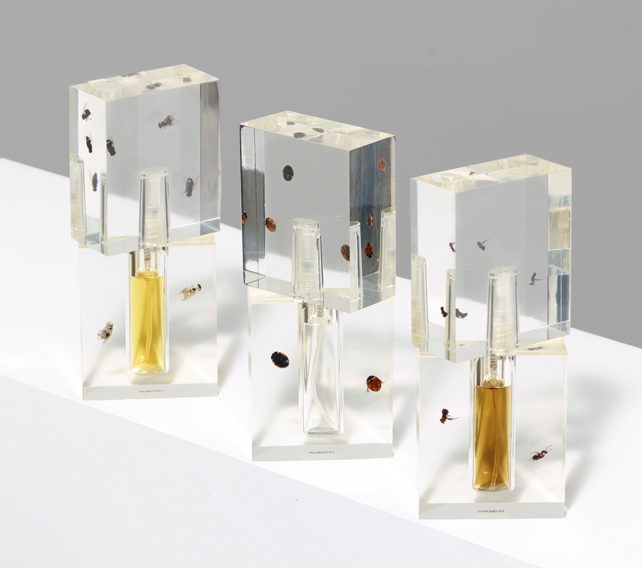 Three rectangular parfume bottles, each decorated with insects preserved in clear plastic
